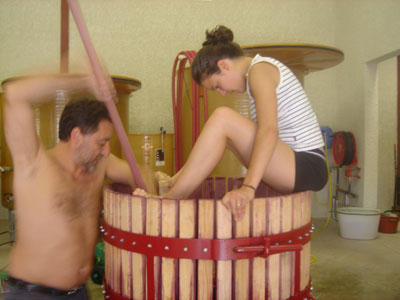 Traditional wine-making