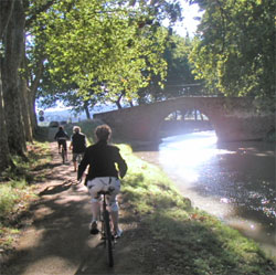 Cycling along the Canal du Midi as part of your cruise - if you feel like some gentle exercise!